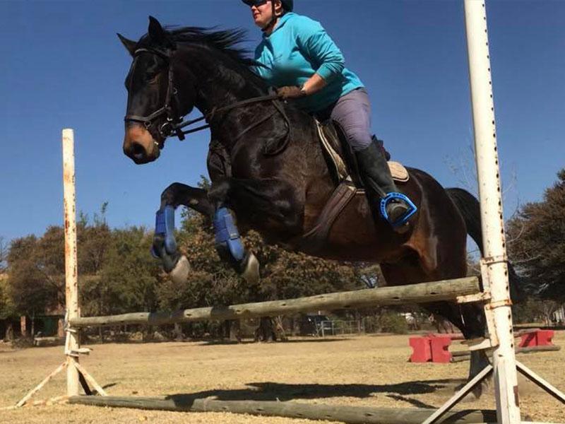 Equiville Horsemanship - Schooling for horses - jumping