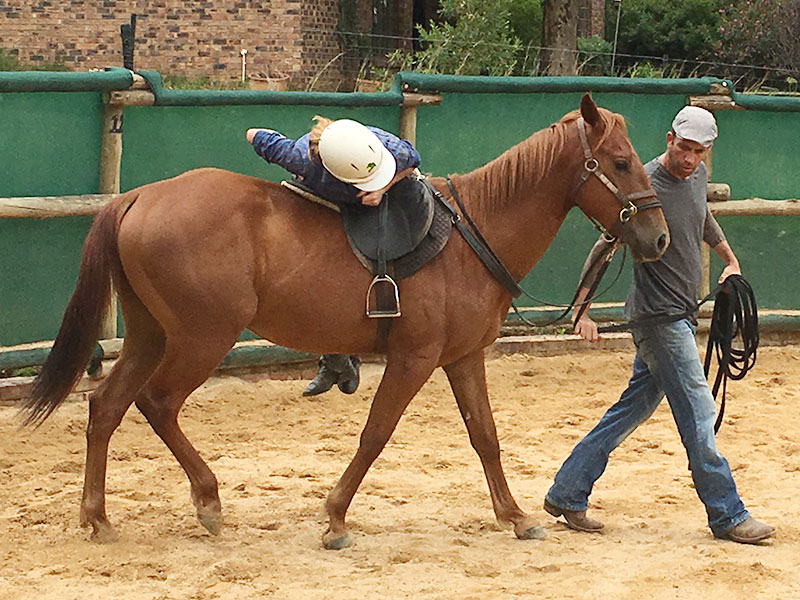 Starting horses in Monty Roberts method by Monty Roberts Certified Instructor