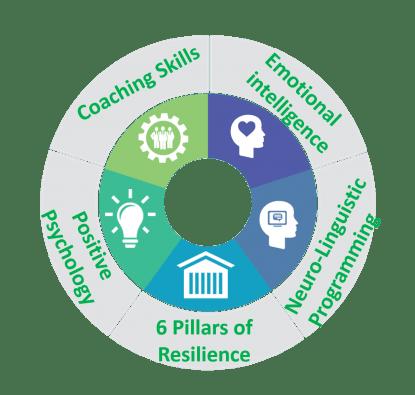 5 Frameworks For Success