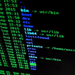 Unix & Linux Discovery