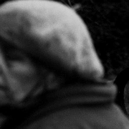 Niki Kohandel, La Dame aux Cygnes, douleur (The Swan Lady, pain)