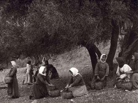 095 - Πρέβελης Κρήτης 1911