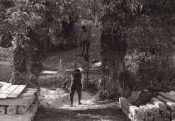 100 - Όλυμπος 1914