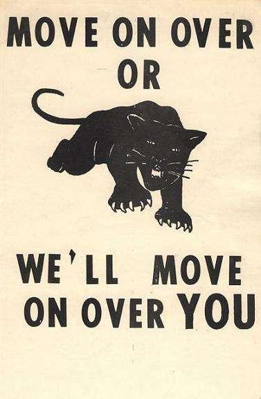 usa-black-panthers