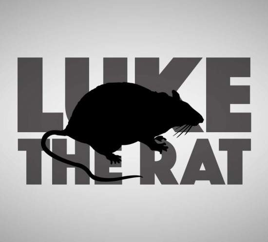 Luke the Rat by Eran Thomson