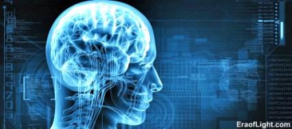 human brain eraoflightdotcom.jpg