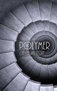 polymersmall