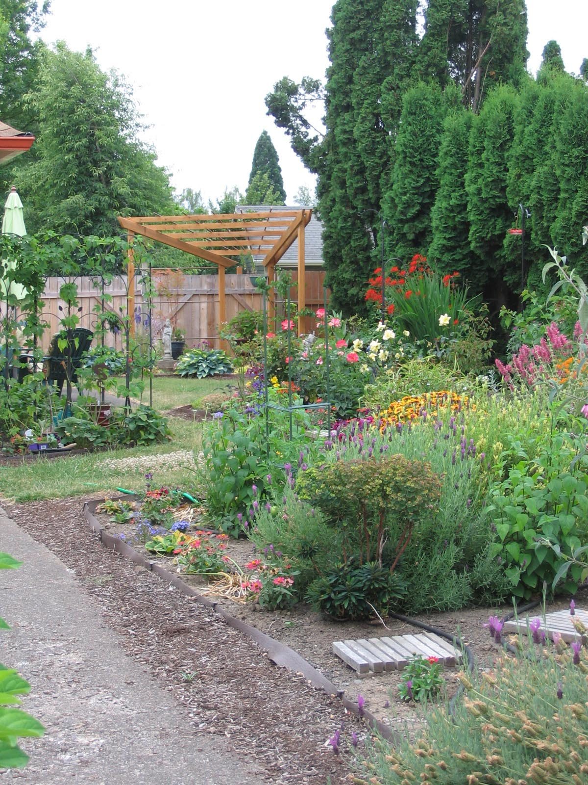 View behind the front garden project, into the house yard