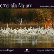 ritorno_alla_natura