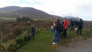 ring_of_kerry5