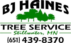 BJ Haines Logo