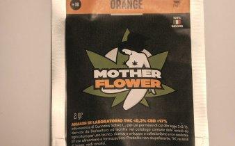 Mother flower confezione canapa