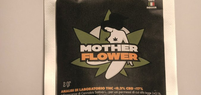 Mother flower confezione canapa