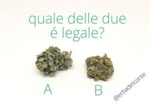quale delle due è legale?