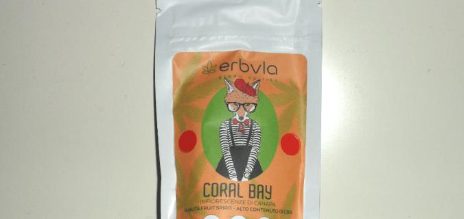 Bustina di canapa legale Coral Bay di Erbula