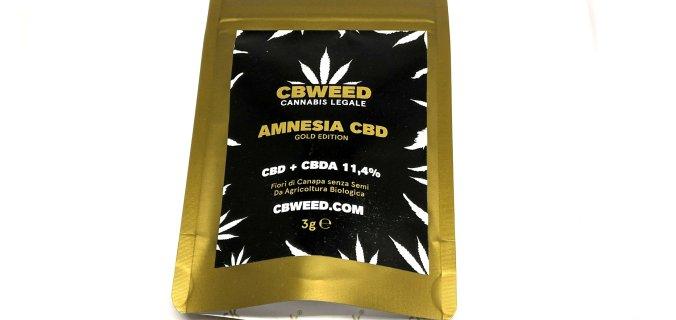 Amnesia bustina
