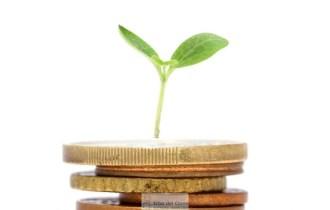 monete e germoglio