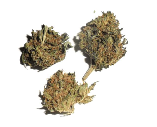 Fiore di canapa legale Purple Haze di CBweed
