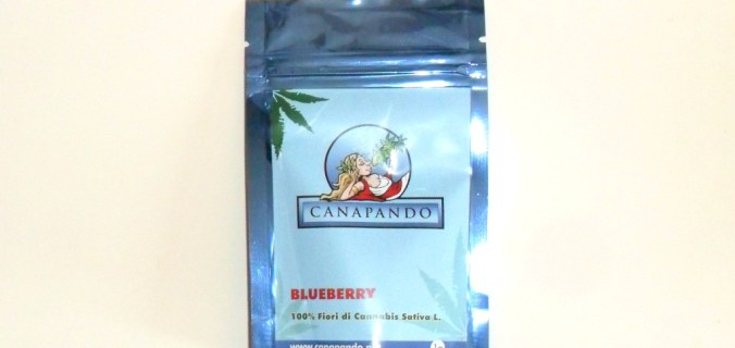 Bustina azzurra di cannabis light Blueberry di Canapando