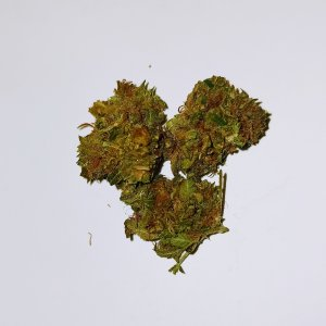 Cannabis legale Orange Bud CBD light