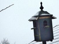 Winter 2017 - Sneeuw in Noordhorn (5)