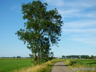 Fietsen Noordhorn Den Ham Noordhorn 01