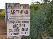 Artimino - Toscane (18)