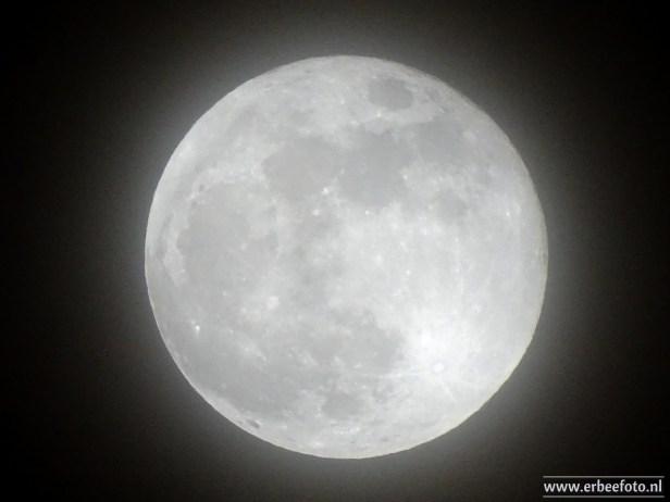 Blue Moon 03