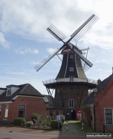 web_Molen Fortuna