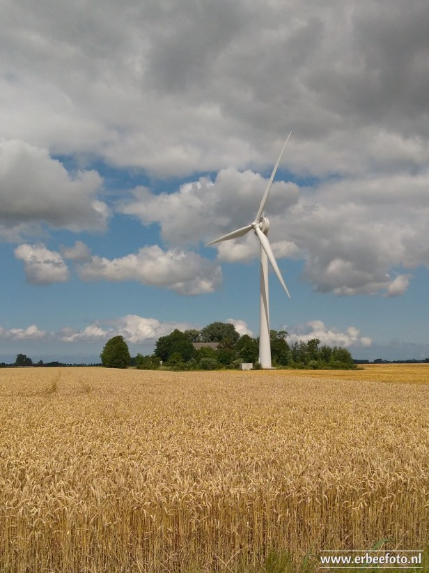 erBeeFoto_Windmolen (Rond Rodehaan)