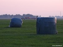 Boeren Hooi