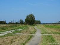 Wehesterzandpad (2e Nijehoezen - Warfhuizen)