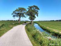 Westerzand, Lutjegast, Groningen