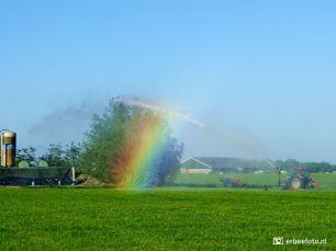 Kunstmatige Regenboog door beregening
