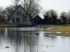 Land onder water, bij Wierum, Groningen