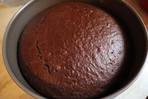 blat ciocolata vegan in tava