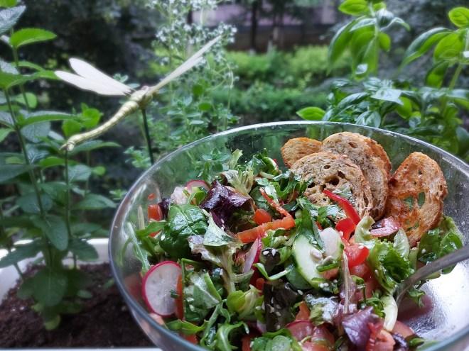 salata cu rondele crocante