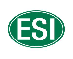 ESI Italia