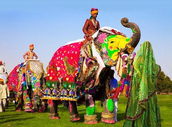 Feel The Royal Rajputana Grandeur At Elephant Festival Rajasthan