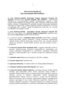 thumbnail of 0123 Eü Kp Kft. ügyvezető igazgató palyazati felhívás