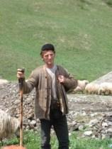 Havasi pásztor