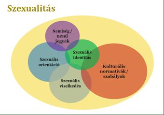 A kortárs szexualitás meghatározásának néhány részeleme