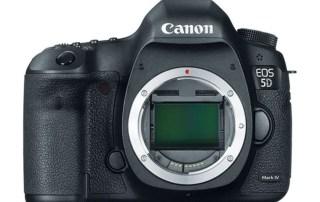canon 5dm4