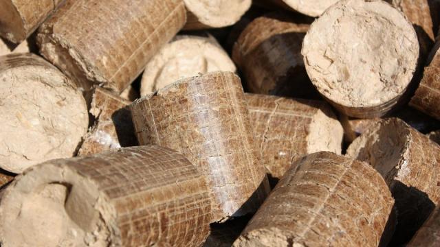 Перед зимой Литва и Польша скупают в Беларуси древесные пеллеты