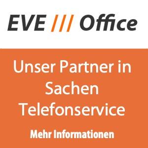 Telefonservice, Virtuelle Sekretärin, Domizilservice