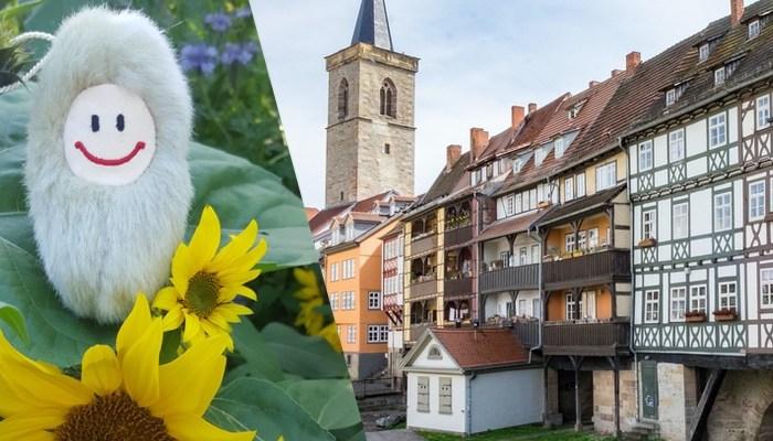 BUGA-Stadtführung Erfurt