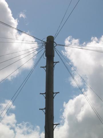 Telephone Pole, CambridgeUK