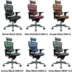 Raynor Ergohuman Chair Alps Mountaineering Big C A T Me7erg