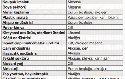 Türkiye'de Meslek Hastalıkları Sınıflandırması