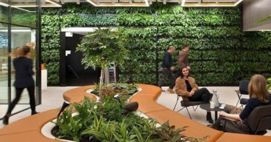 Biophilia or the renewal of the urban jungle